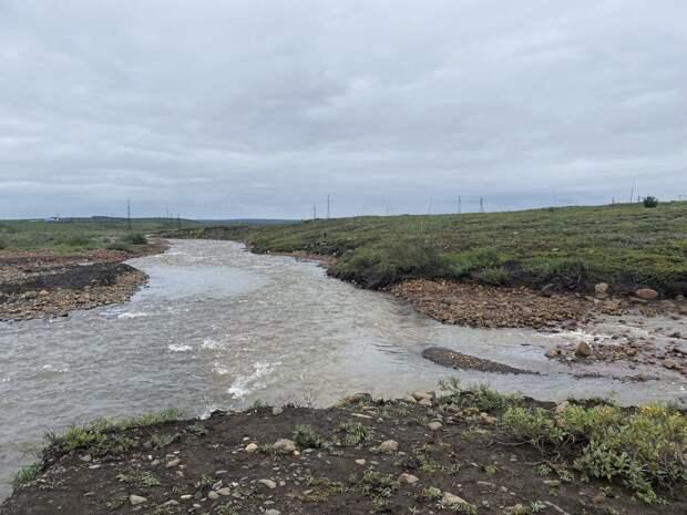 Водоёмы Норильского промышленного района проверят на загрязнения