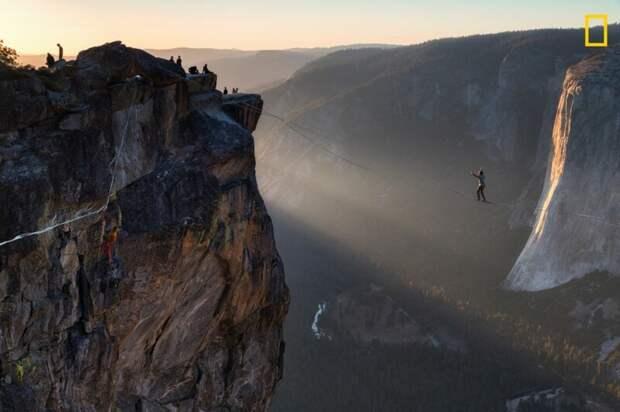 Хождение по стропе в национальном парке Йосемити в Калифорнии (Фото: Абхишек Саббарвал) national geographic, животные, конкурс, конкурсант, путешествие, фотография, фотомир