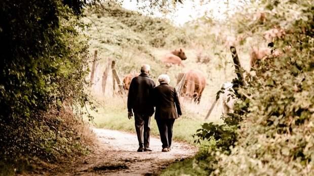 Новое пособие для пенсионеров одобрили в комитете Госдумы