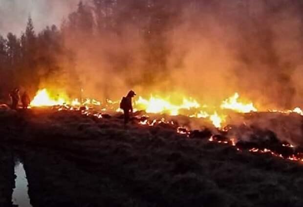Пожары в Якутии: карта и последние новости