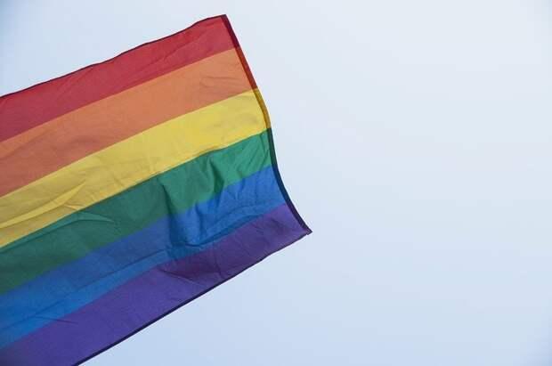 В Воронеже передумали изучать поведение геев после ажиотажа в СМИ