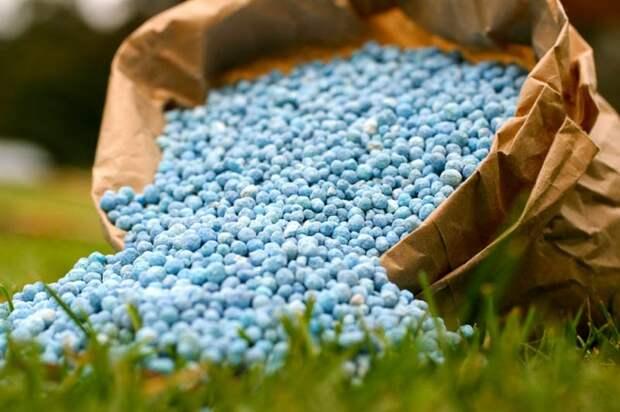Минеральные удобрения: виды и секреты их применения
