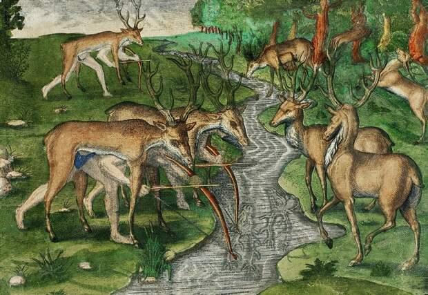 Быт и нравы индейцев Нового Света в гравюрах Теодора де Бри