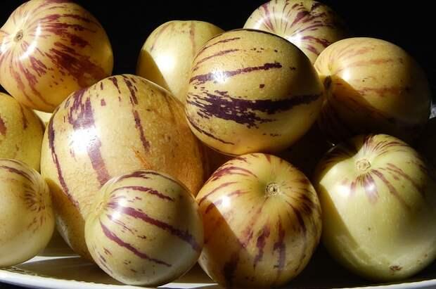 Что такое дынная груша?