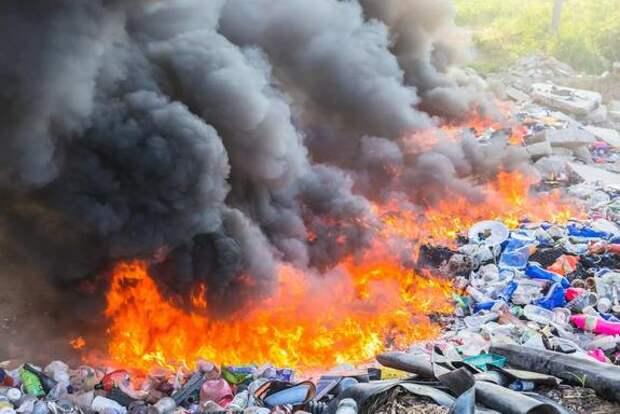 Онкология и экология: мусоросжиганием едины ?