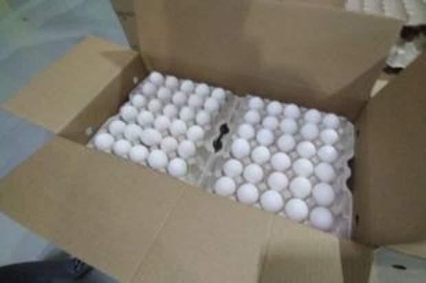 Запретят ли контейнеры для яиц?