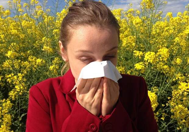 Сезонная аллергия: из-за чего она появляется и как с ней бороться