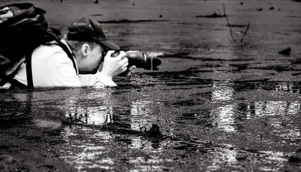 Рискующие фотографы