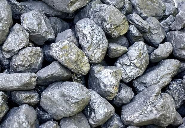 Происхождение угля до сих пор остается загадкой