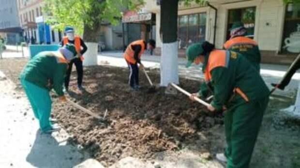 На главных улицах Шымкента высадили 18 тысяч саженцев цветов