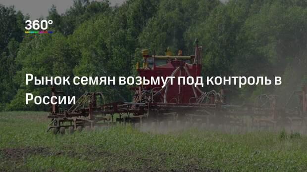 Рынок семян возьмут под контроль в России