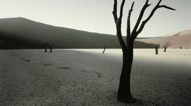 Синоптики прогнозируют в Крыму сильную засуху в конце года