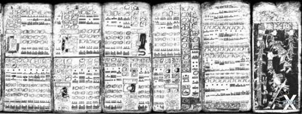 Копия Дрезденского кодекса