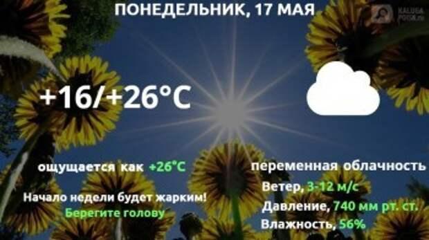 Прогноз погоды в Калуге на 17 мая