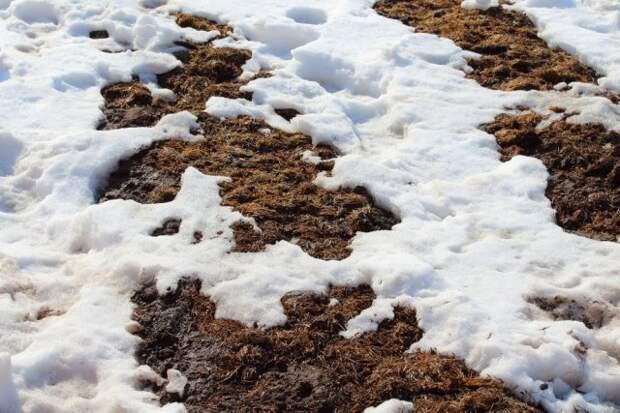 удобрения по снегу