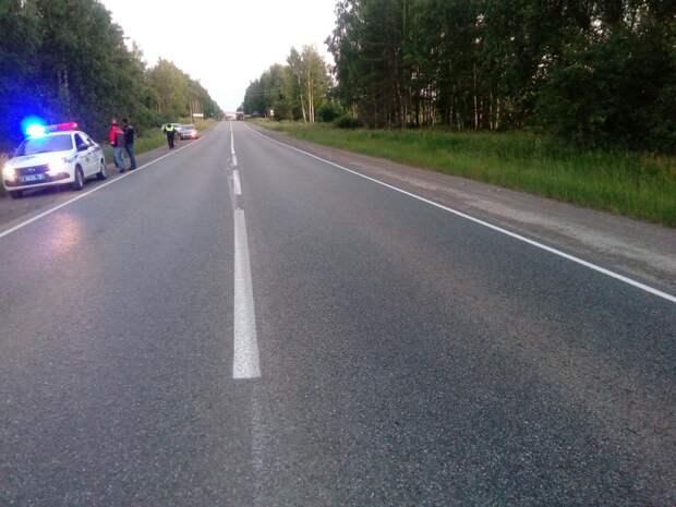 На трассе Ижевск-Воткинск под колёсами автомобиля погиб пешеход