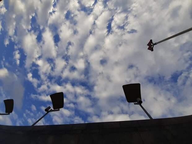 Фото дня: светильники над «Петровским парком» привлекли внимание пользователя сети