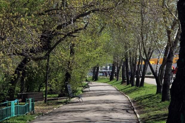За сутки в Иркутской области коронавирусом заболели 123 человека