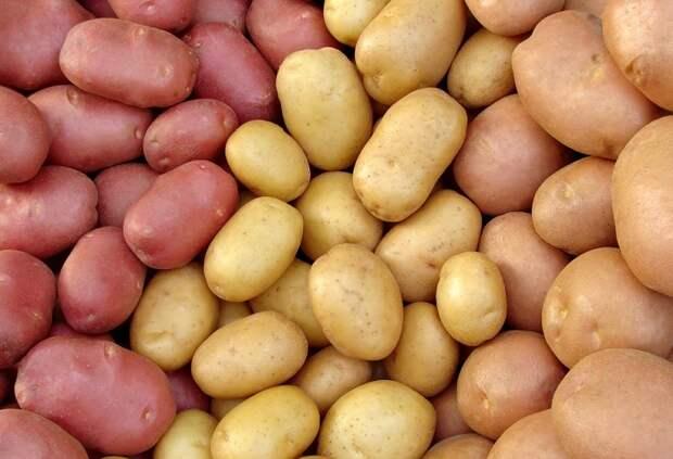 приготовление картофельного пюре пошагово