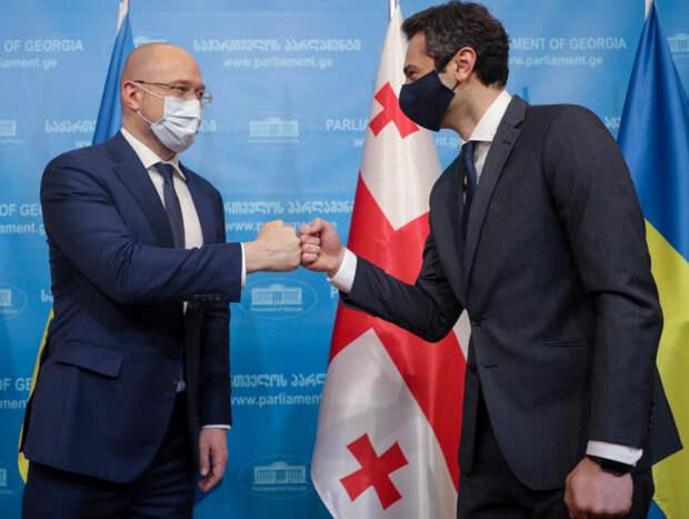 «Это чистая демагогия!» – в Грузии оценили визит украинского премьера Шмыгаля