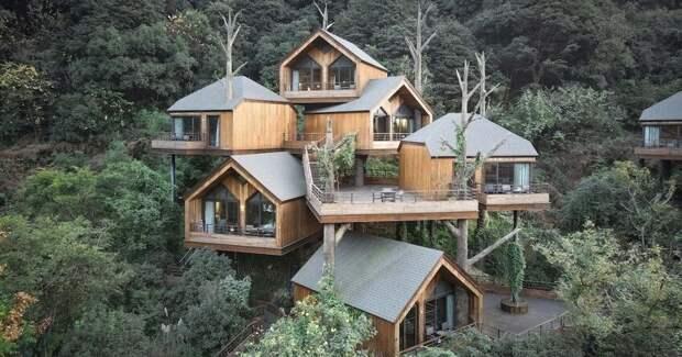 В Китае построили волшебный отель из домиков на деревьях