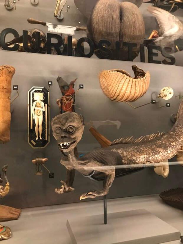 Пока посетители на карантине, музеи мира устроили конкурс на самый жуткий экспонат