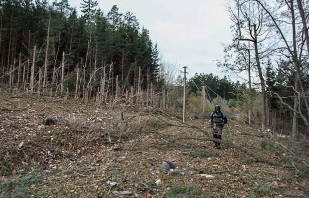 Президент Чехии: Взрывы воВрбетице могли быть попыткой скрыть недостачу оружия