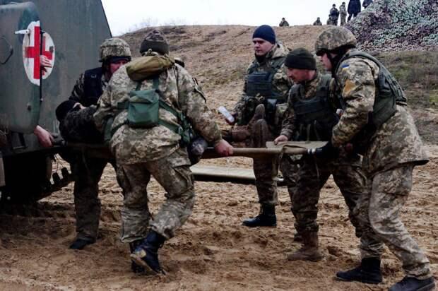 НаДонбассе уничтожен горный штурмовик ВСУ (ФОТО)