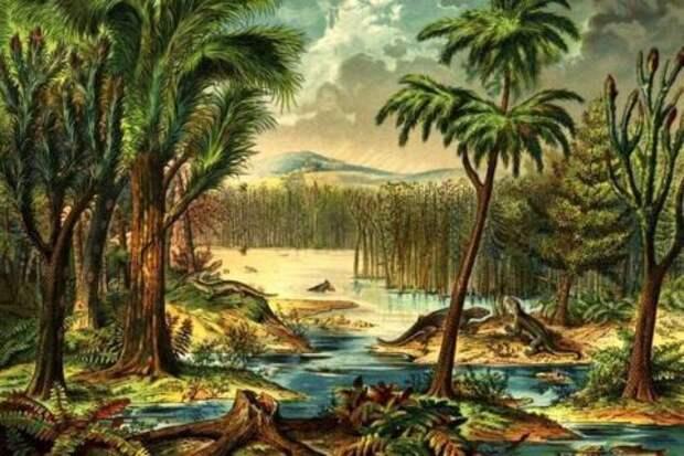 Исчезнувшие леса каменноугольного периода