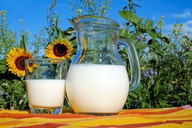 День Мавры Рассадницы: как 16 мая не навлечь беду из-за молока и носовых платков