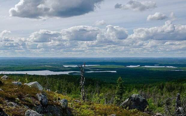 Священная гора саамских шаманов. /Фото: pikabu.ru