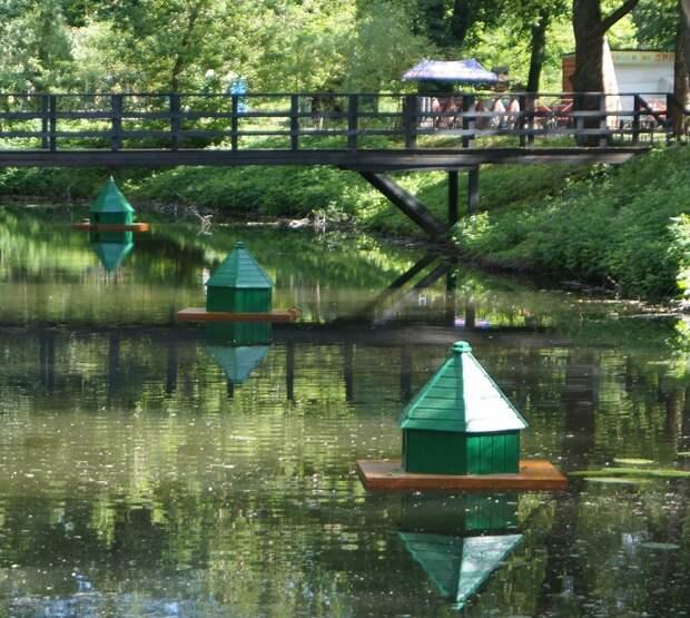 Утки из парка «Кузьминки» обзавелись плавучей недвижимостью