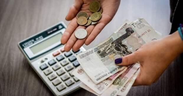 ВГосдуме придумали, что делать срастущими долгами россиян