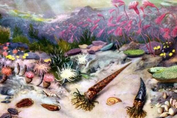 Вымирание в кембрийско-ордовикском периоде