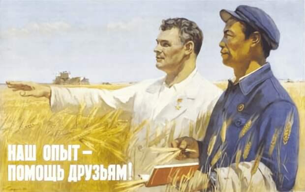 Китайский путь для России: неизбежное будущее или упущенная возможность?