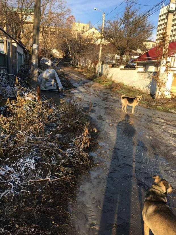 В Симферополе на одном из перекрёстков прорвало трубу