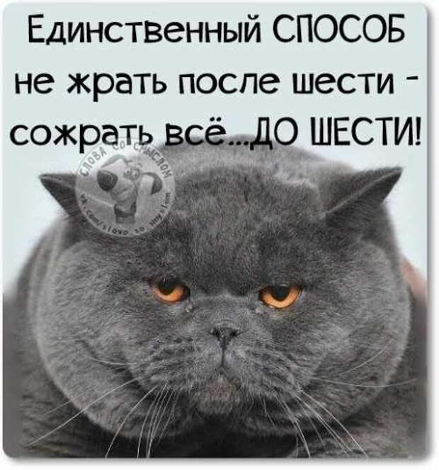 5402287_1425214674_voskresnovesenniefrazyvkartinkah26 (500x536, 34Kb)