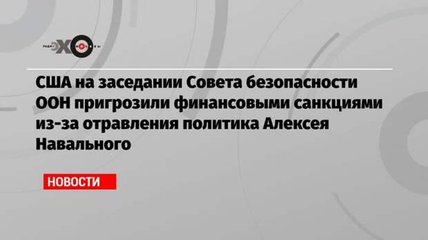 США на заседании Совета безопасности ООН пригрозили финансовыми санкциями из-за отравления политика Алексея Навального