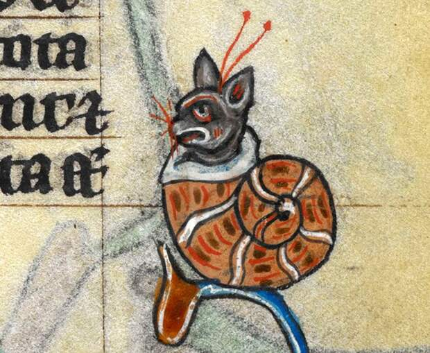 Средневековые представления о котах
