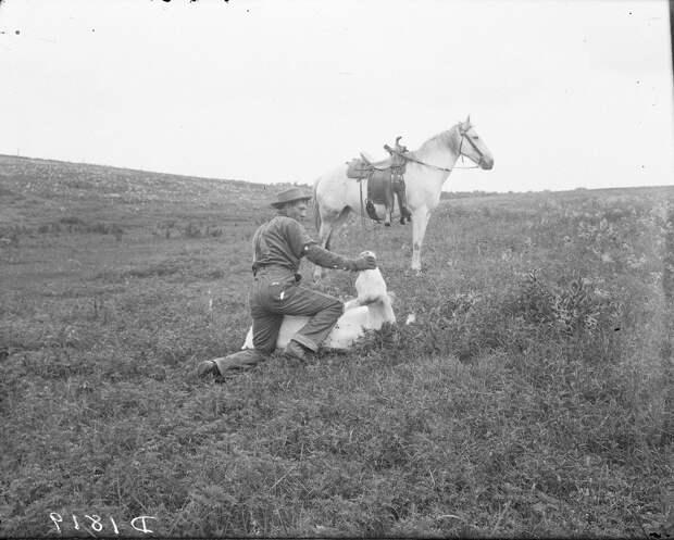 Как поднималась американская целина. Архивные фотографии пионеров Великих равнин конца 19-го века 12
