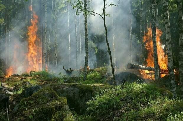 Единый сигнал о чрезвычайных ситуациях появится в России