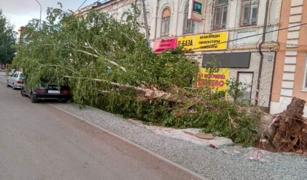 Жительница Бузулука: «Ятолько села, идеревом накрыло нашу машину»