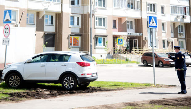 «Народный инспектор» помог установить в Подмосковье 12 тыс м ограждений для газонов