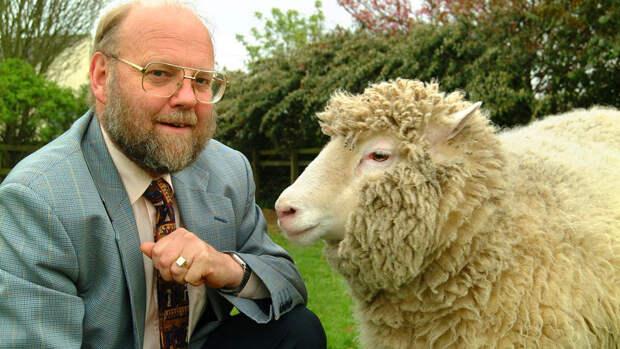 Британский биолог Ян Вилмут и овечка Долли