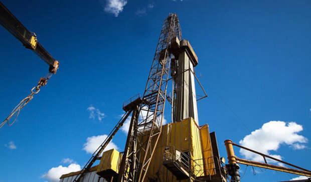Два нефтяных участка выставлены наторги вТомской области