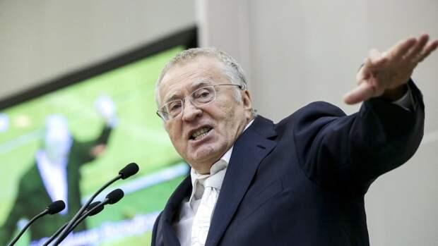 """Жириновский заявил о политической """"чистоте"""" партии ЛДПР"""