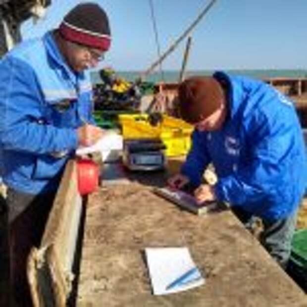 Экспедицию по исследованию промысловых донных рыб в Азовском море проводят ученые ВНИРО