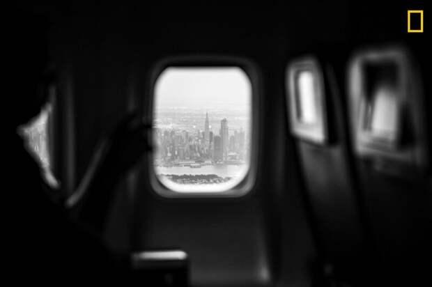 Нью-Йорк в иллюминаторе (Фото:  Мэт Рик) national geographic, животные, конкурс, конкурсант, путешествие, фотография, фотомир