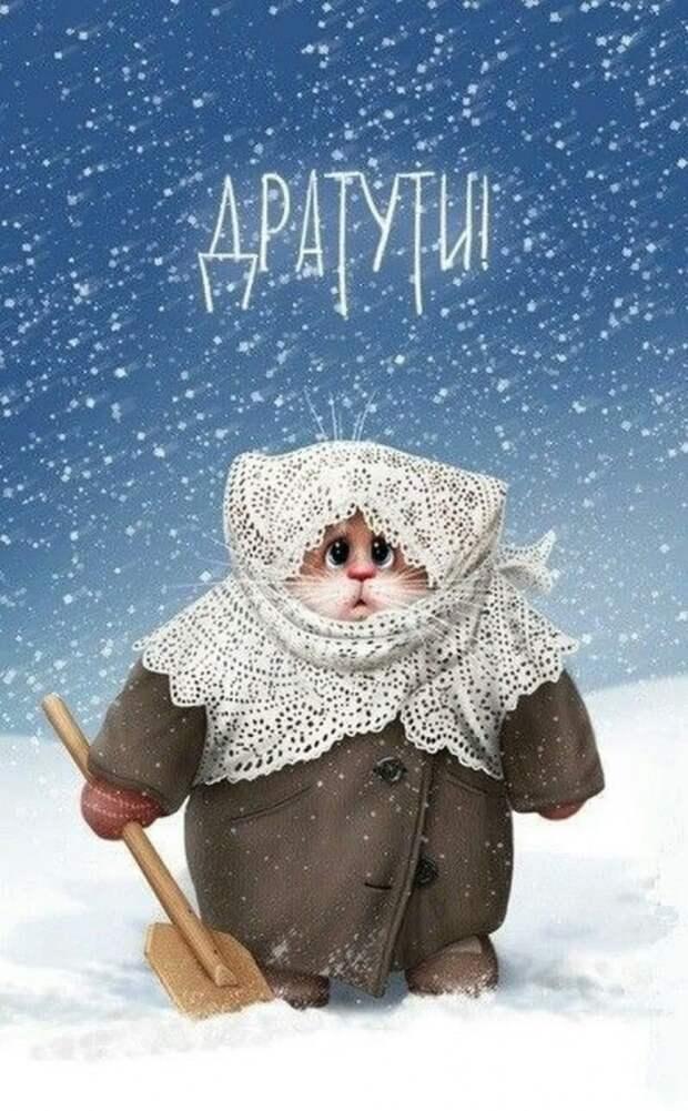 коты Алексея Долотова – 03