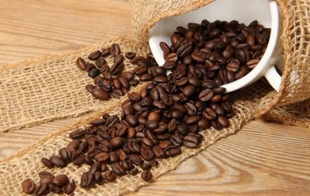 Нейропсихолог предложила альтернативу утреннему кофе